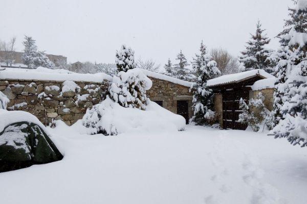 nieve-jardin-zona-porton-entrada499F4C0A-5576-D8B4-C7DF-A217D3CE2CDC.jpg